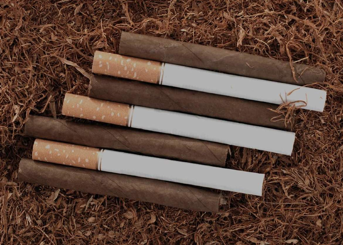 Difference between cigars and cigarettes